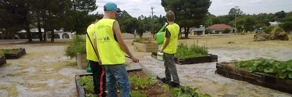 Repay WA participants at the Collie community garden.